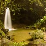 Emerald Pool Shower