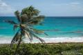 Praia em Barbados (Oceano Atlântico)